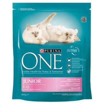 Purina ONE Junior (θα την βρείτε στο  Κτηνιατρείο μας)